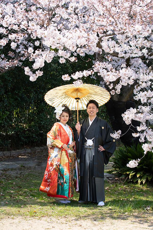 大仙公園 桜