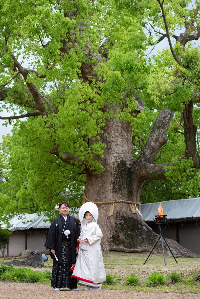 神社 挙式 当日撮影