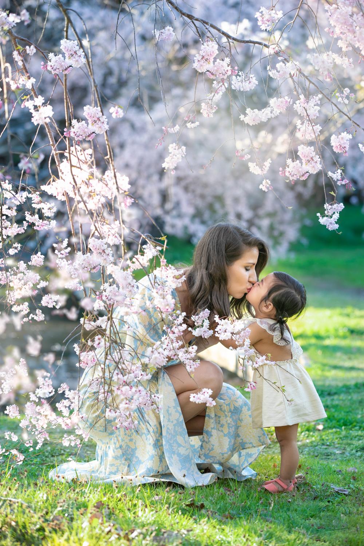 桜ファミリーフォト